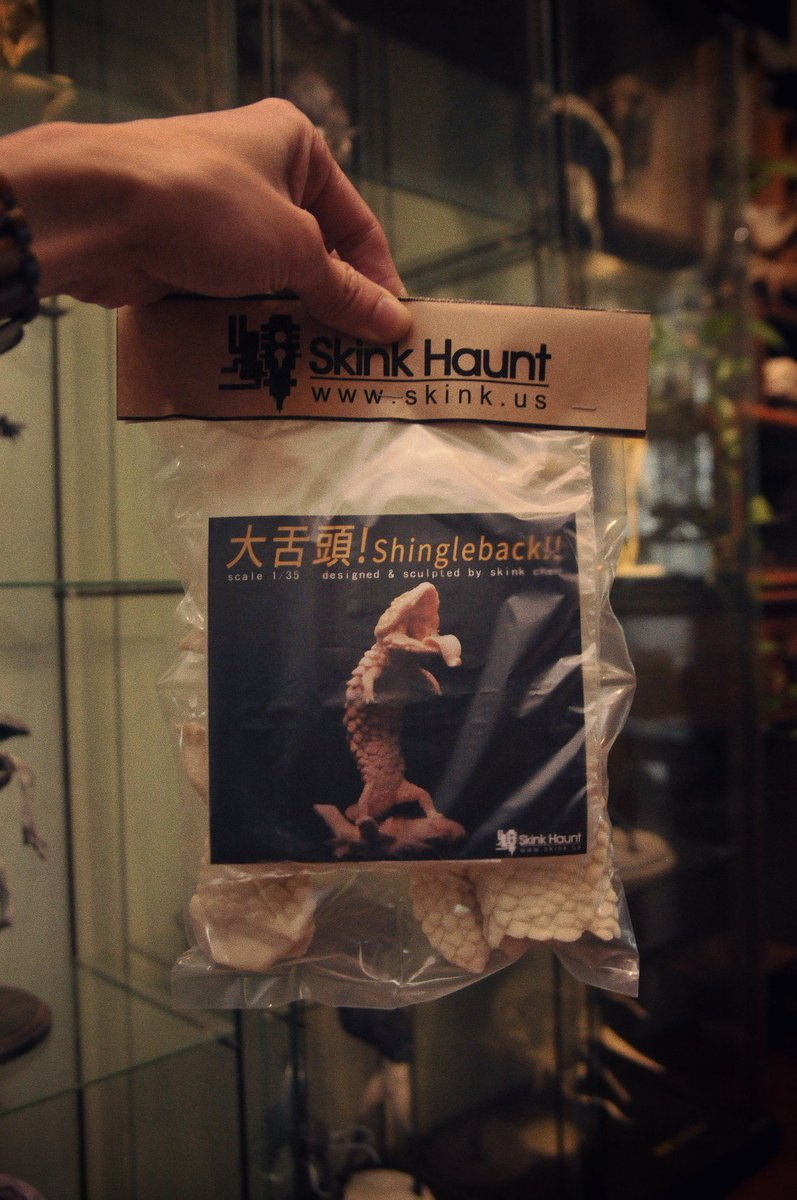 今天陸續寄出!謝謝大家的支持! Already sent out! thanks !! 😃 skink.us/1/sellbox/05_U…