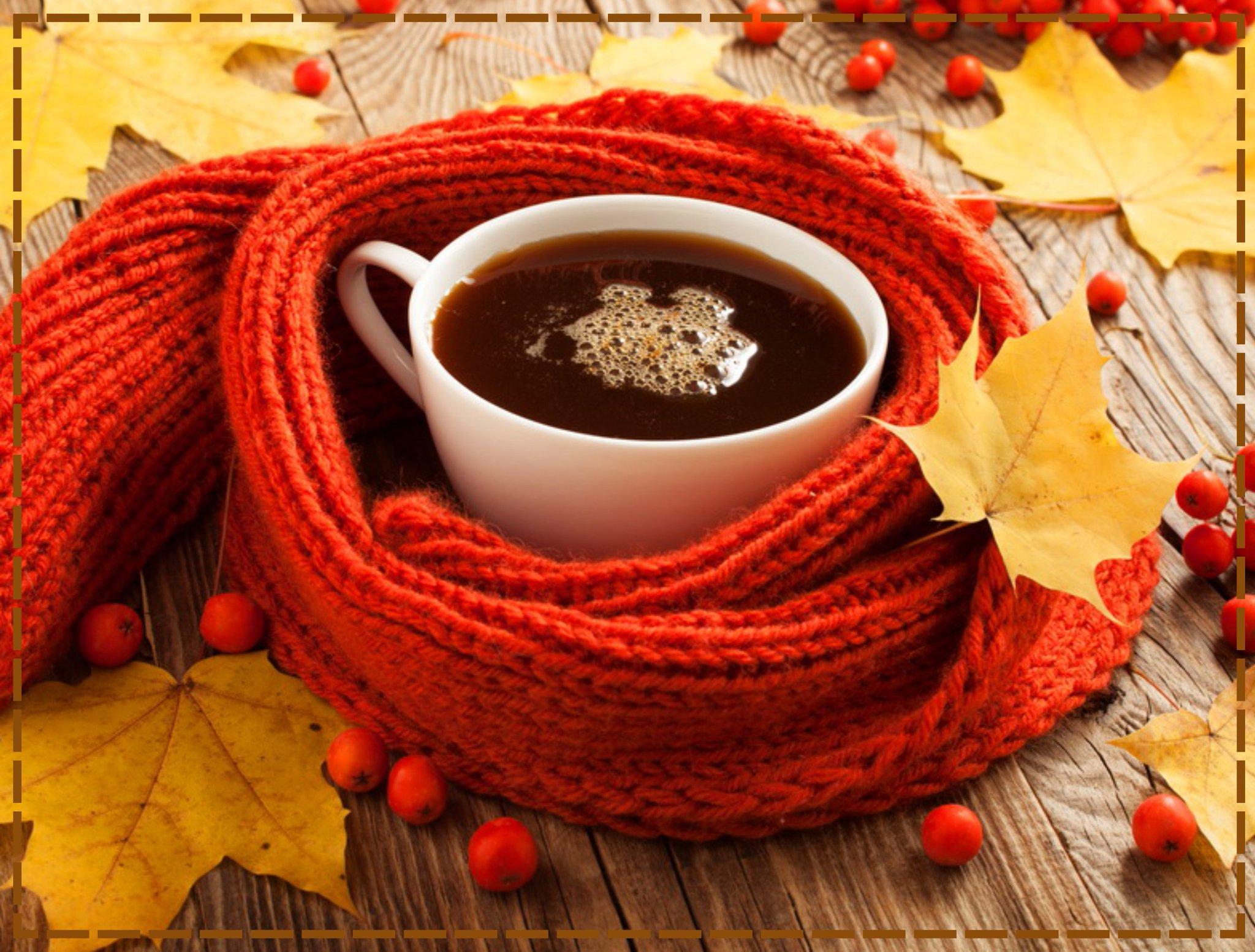 часто протекает картинки осень кофе и шоколад медведи крайне редко