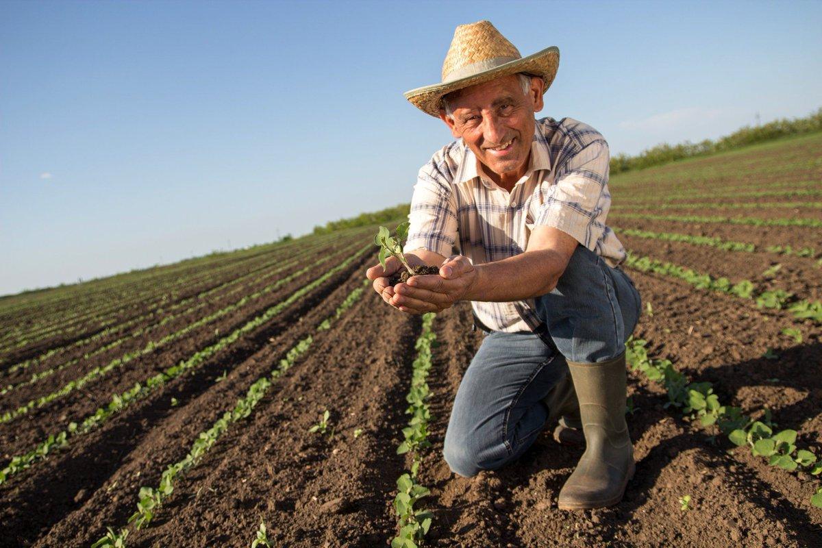 Днем рождения, фермер картинки