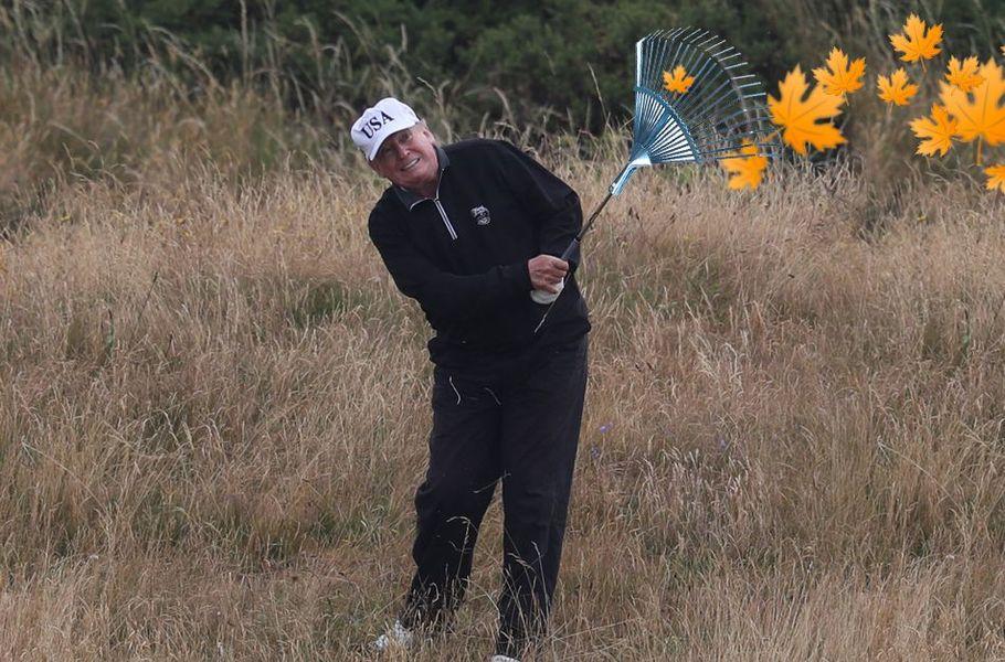 Finns mock President Trump by posting 'forest raking' photos online https://t.co/2hogNXnbs3 https://t.co/2GPTZHPLiQ