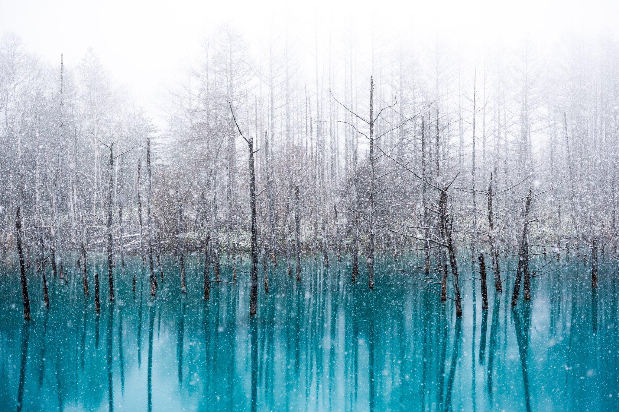 北海道の青い池!!雪とコラボしたらとんでもなく幻想的!!