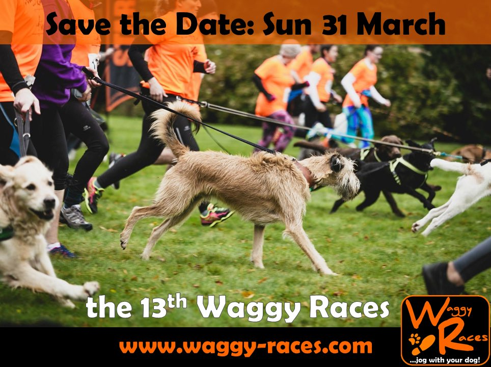 🔸THE 13th WAGGY RACES!🔸 🗓SAVE THE DATE - Sun 31 March 💻 Entry coming soon: waggy-races.com