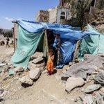 #jemen Twitter Photo