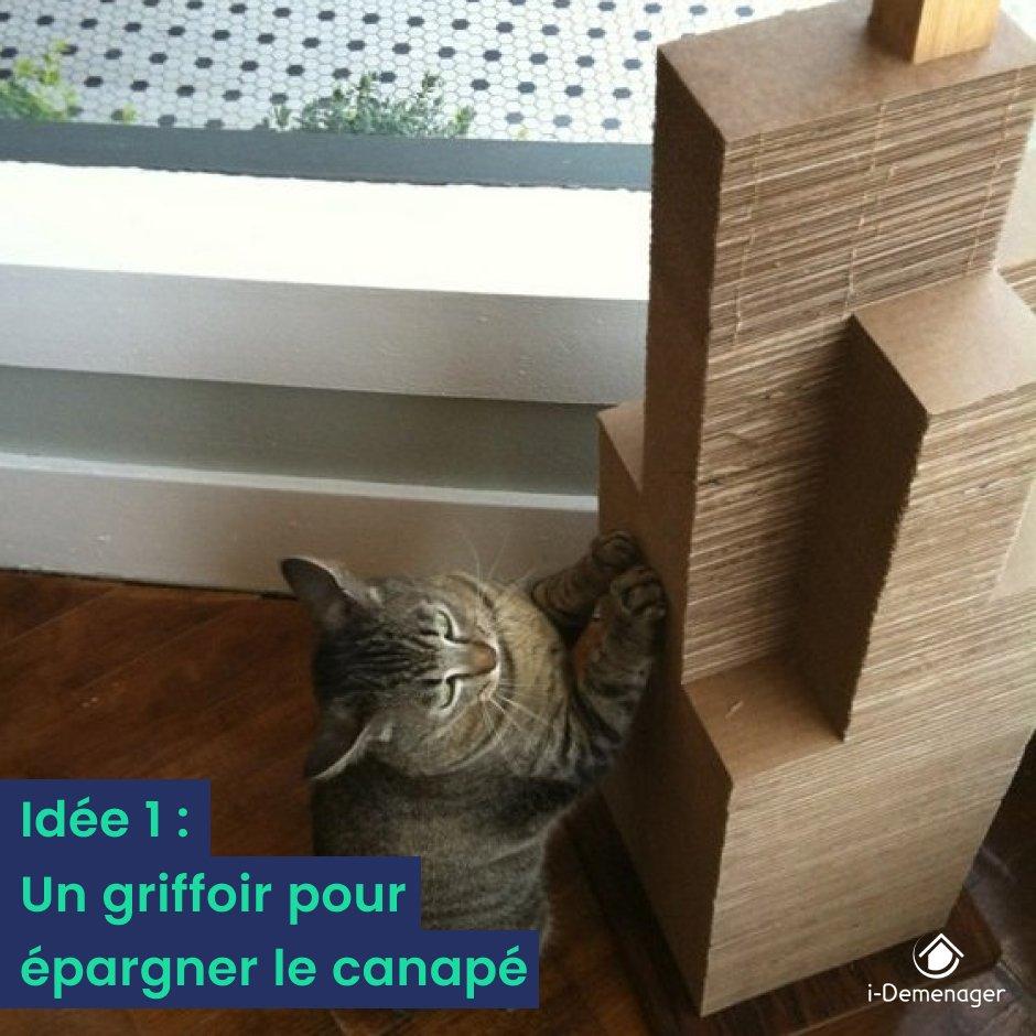 """Griffoir Chat Fait Maison nextories on twitter: """"? rendez votre chat heureux tout en"""