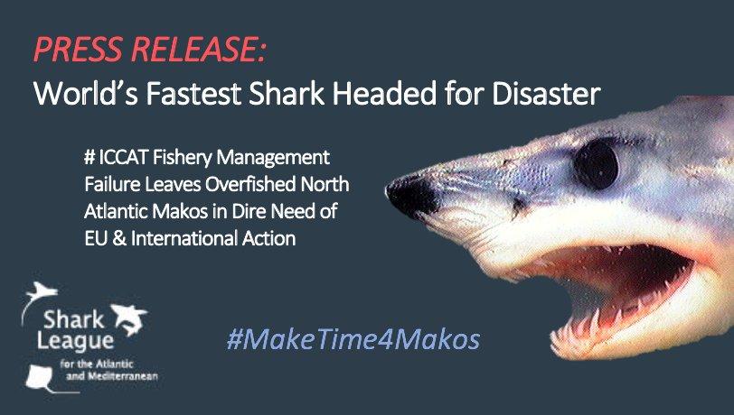 😭Awful but not wholly surprised #ICCAT2018 #NoLimitsNoFuture #overfishing #unsustainable #MakeTime4Makos