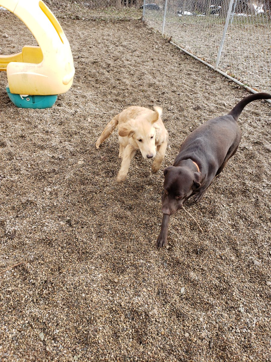Gunner catches up to Roxy