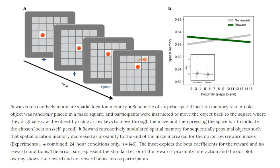 """Reward retroactively prioritizes memory for objects closest to the reward"" in humans https://go.nature.com/2A6SKKS  New paper from Daphna Shohamy lab at Columbia!"