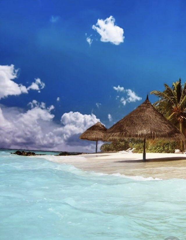 جزيرة بورآ بورآ ♡..|~ DscsHUuXcAE_Ng-.jpg