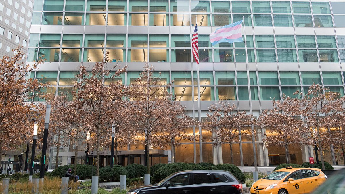 Flying the transgender flag today in honor of #TransDayofRemembrance. $GS, will continue to support the transgender and broader #LGBT community – and advocate for an inclusive work environment where every person can freely express the gender with which they identify. #TDOR