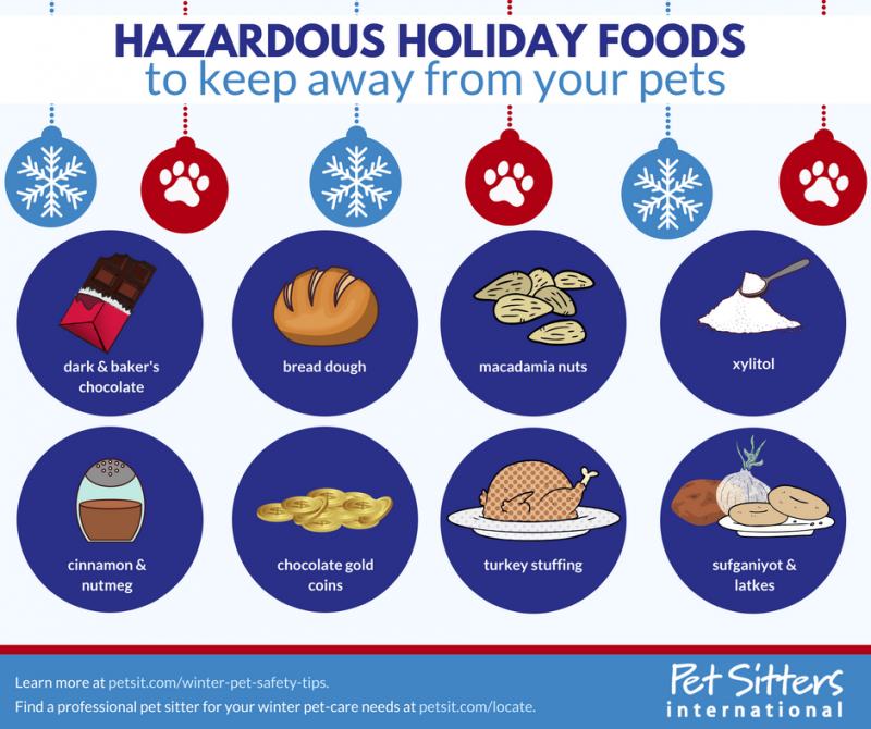 Be sure to keep in mind these winter and holiday pet-safety tips from #TakeYourDogToWorkDay creator @PetSittersIntl: petsit.com/winter-pet-saf…. #pets #pet #winter #safety #holidays #tiptuesday