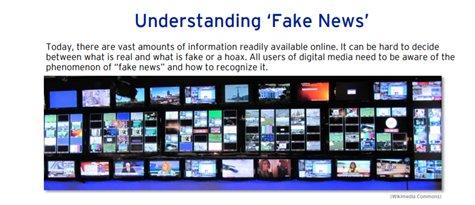 online Case Studies in