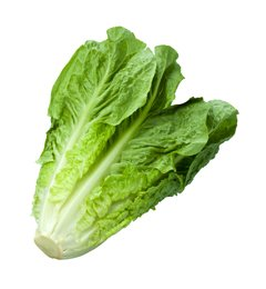 Don't eat, serve or sell romaine lettuce, CDC advises Americans in wake of new E coli outbreak: https://t.co/A2SIWSonp3