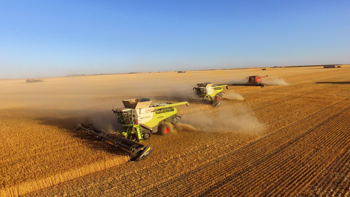 Harvest pulled up with rain, good results so far with very low rainfall season, lentils,canola & most barley done & some wheat to go, Claas machines very impressive package, CEMOS auto thrashing,cleaning delivering mind blowing sample & productivity gains #Harvest2018 #Harvest18