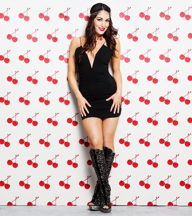 Happy Birthday to the beautiful Brie Bella!