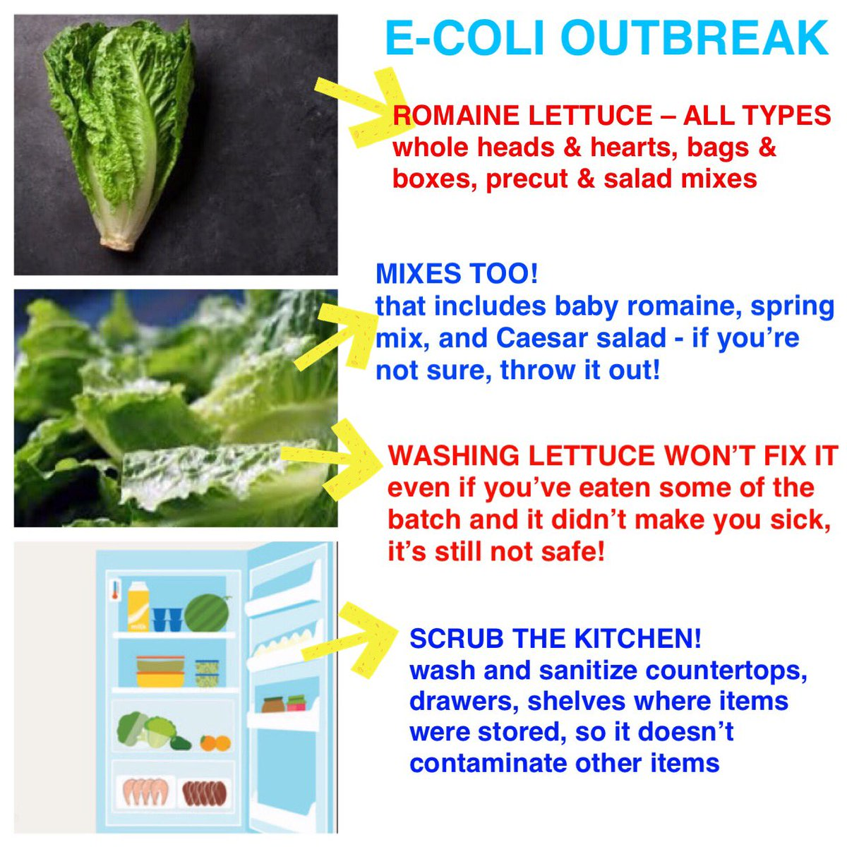 Forum on this topic: How Can I Protect Myself from E.coli, how-can-i-protect-myself-from-e-coli/
