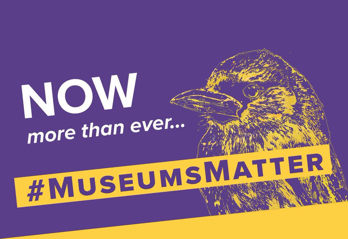 In the spirit of Thanksgiving, please consider donating to the #LSUMNS 2019 Annual Appeal and help support our natural history museum. #MuseumsMatter lsufoundation.org/mnsaf19