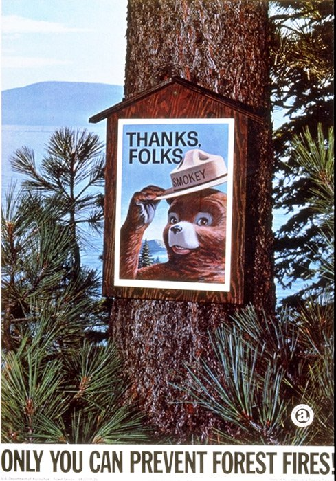 As we get ready for #Thanksgiving, I want to thank #TeamSmokey for all you do to help prevent #wildfires. Today Ill share some of the things Im most thankful for. #OnlyYou
