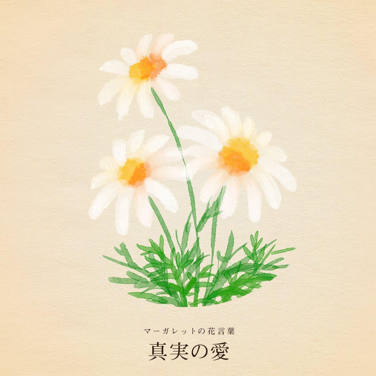 花 誕生 月 11 日 22