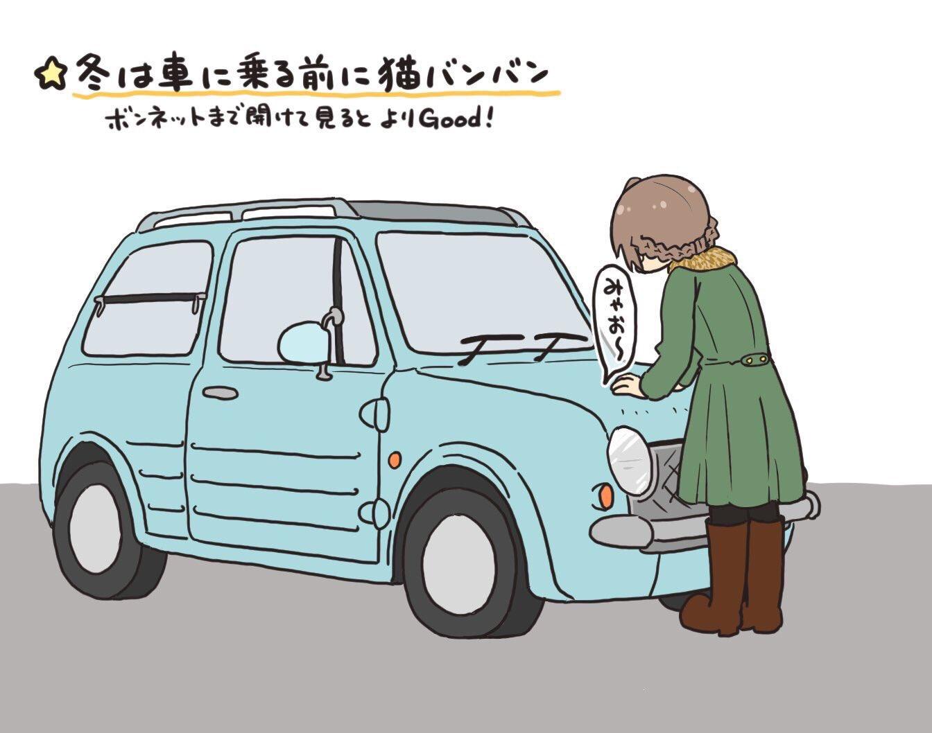 いよいよ寒くなってきましたww運転前には「猫バンバン」を忘れずに!!