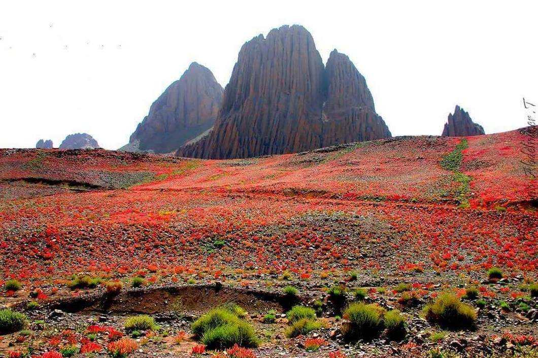 """Radio Algérienne on Twitter: """"Good Morning #Algeria from #Assekrem -  #Tamanrasset is a high plateau in the Hoggar Mountains of southern Algeria,  rising from the larger Atakor plateau Assekrem is within Ahaggar"""