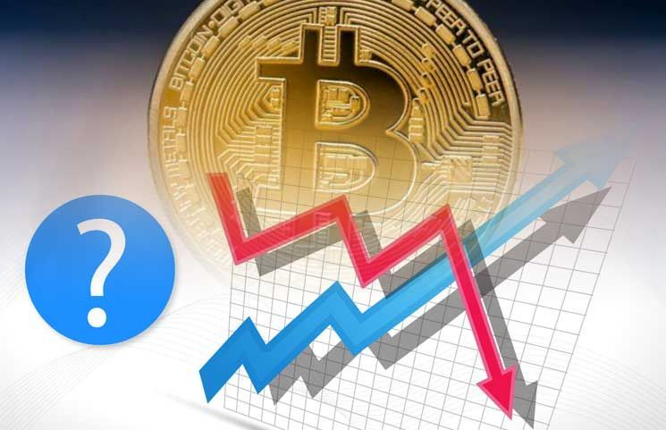 bitcoinprofitability hashtag on Twitter