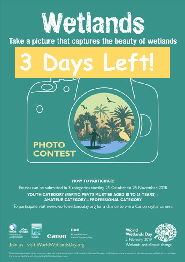 Participate in the Amateur, youth or professional category for a chance to  win a Canon Digital Camera- Upload your photo here https://bit.ly/2REM7GW  ...