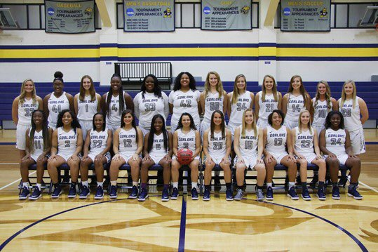 Webster University Women's Basketball (@GorlokWBB) | Twitter