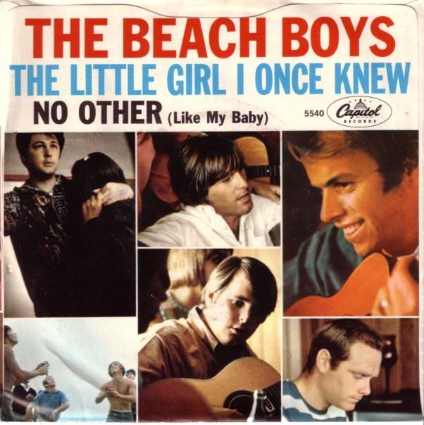 Little girl beach boys — photo 2