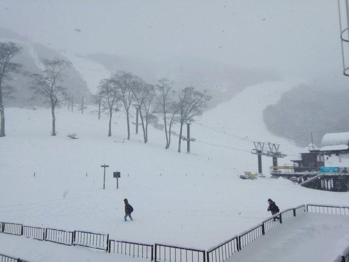 谷川岳天神平スキー場のtwitterイラスト検索結果