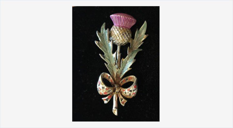 Vintage Signed Enameled Exquisite Scottish Thistle Kilt Brooch Pin Tartan  Bow | eBay #pin #
