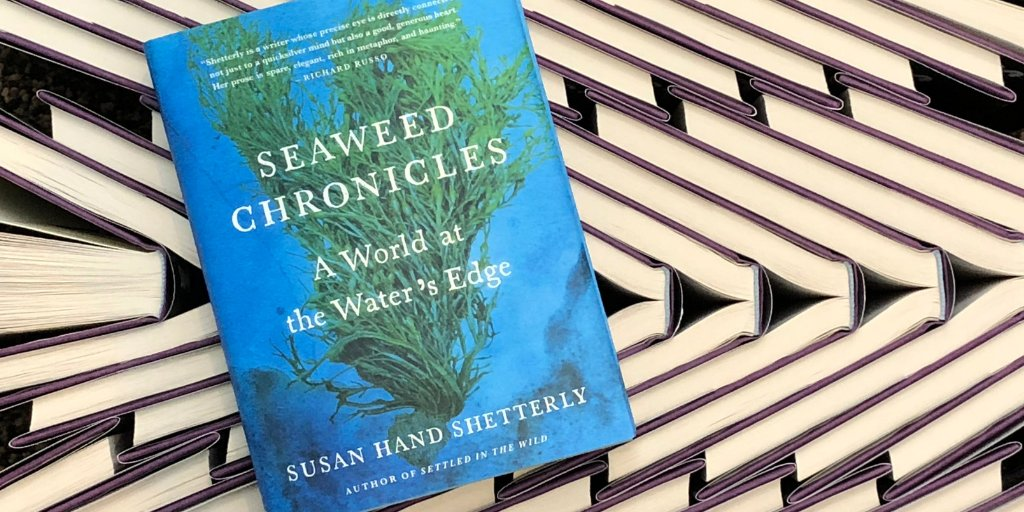 Explore a hidden world in Susan Hand Shetterly's #SeaweedChronicles, a $3.99 #ebook today: https://t.co/7c23EbchFH
