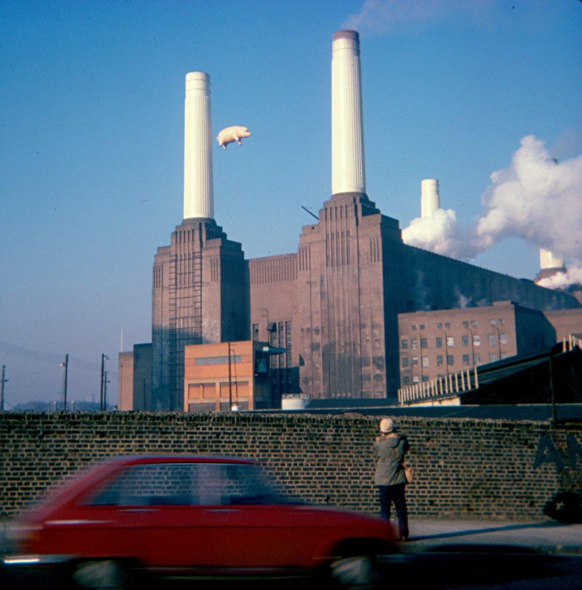 DstxnxiWoAIPzsL?format=jpg&name=medium - Pink Floyd's new 'Animals' takes in a railway!