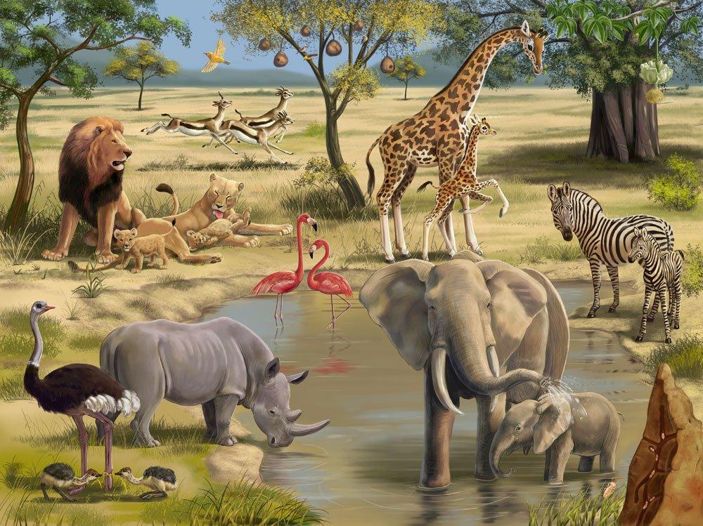 Картинки мир животных и растений