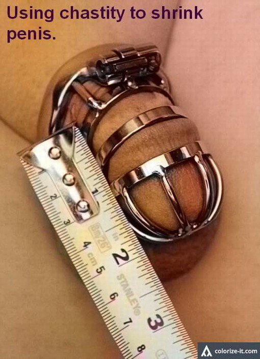 permanent chastity small penis