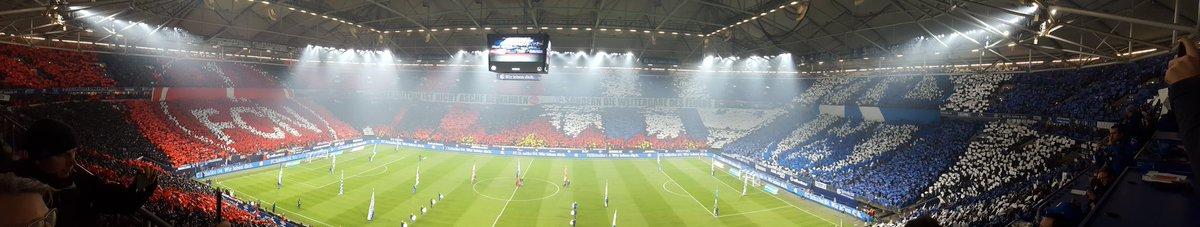 HAMMER! 😍😍😍  #fcn #S04fcn #SchalkeundderFCN