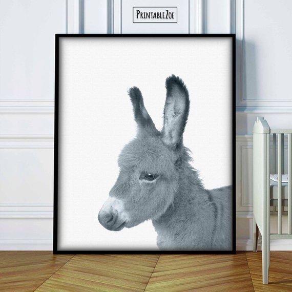 baby zebra digital print,donkey,animal wall art,safari,woodland nursery decor