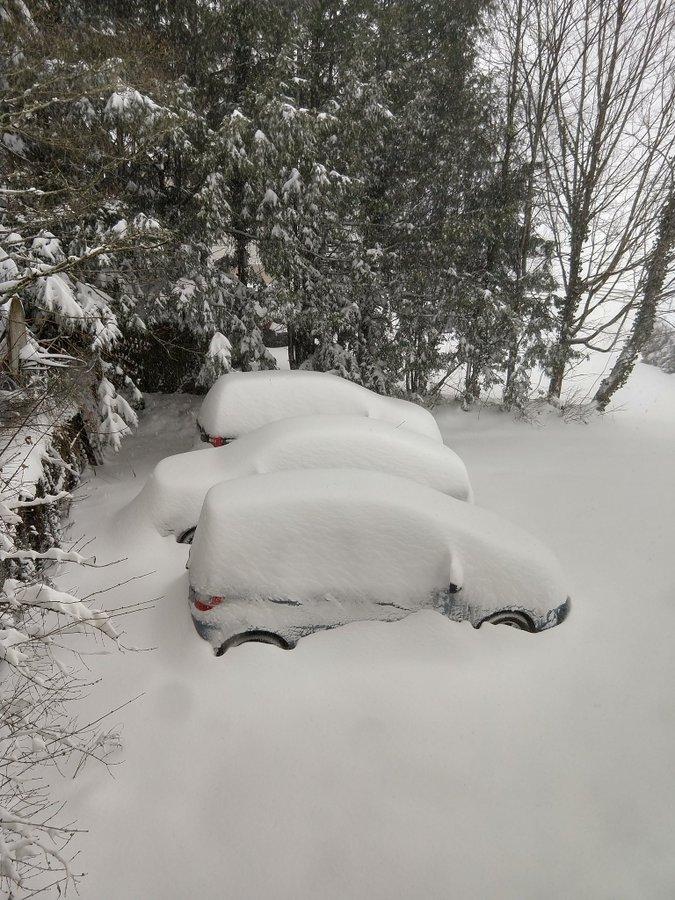 SNOW to blanket the South Dt-9UZSWkAEJ4Tf?format=jpg&name=900x900