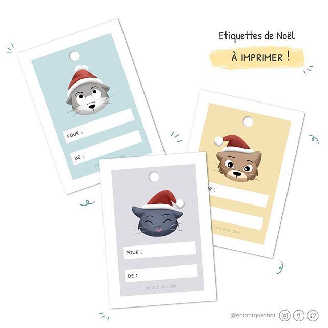 En Tant Que Chat على تويتر Qui Dit Noel Dit Emballage De Cadeaux