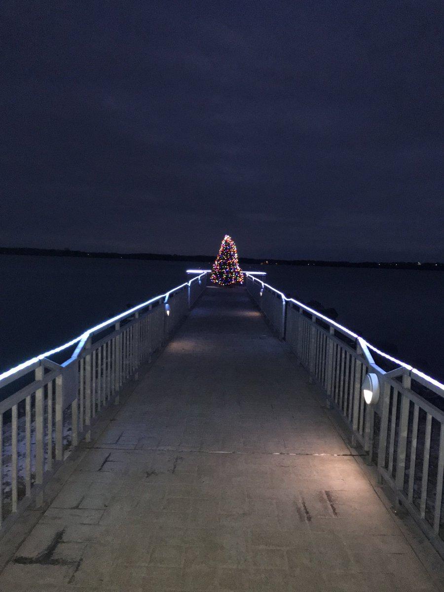 Christmas tree on Seneca Lake (photo)