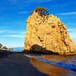 Image for the Tweet beginning: L'Illa Roja, a Begur, ara