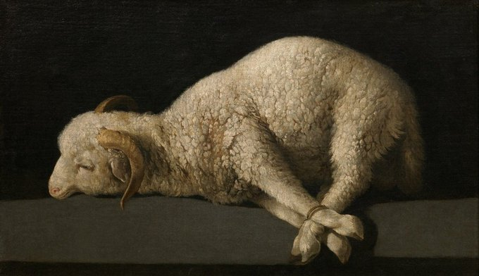 #OrgulloBarroco 𝘈𝘨𝘯𝘶𝘴 𝘋𝘦𝘪 [Zurbarán, 1635 - 1640] Photo