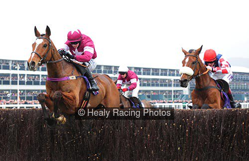 Don Poli well-schooled for Becher Chase return Photo