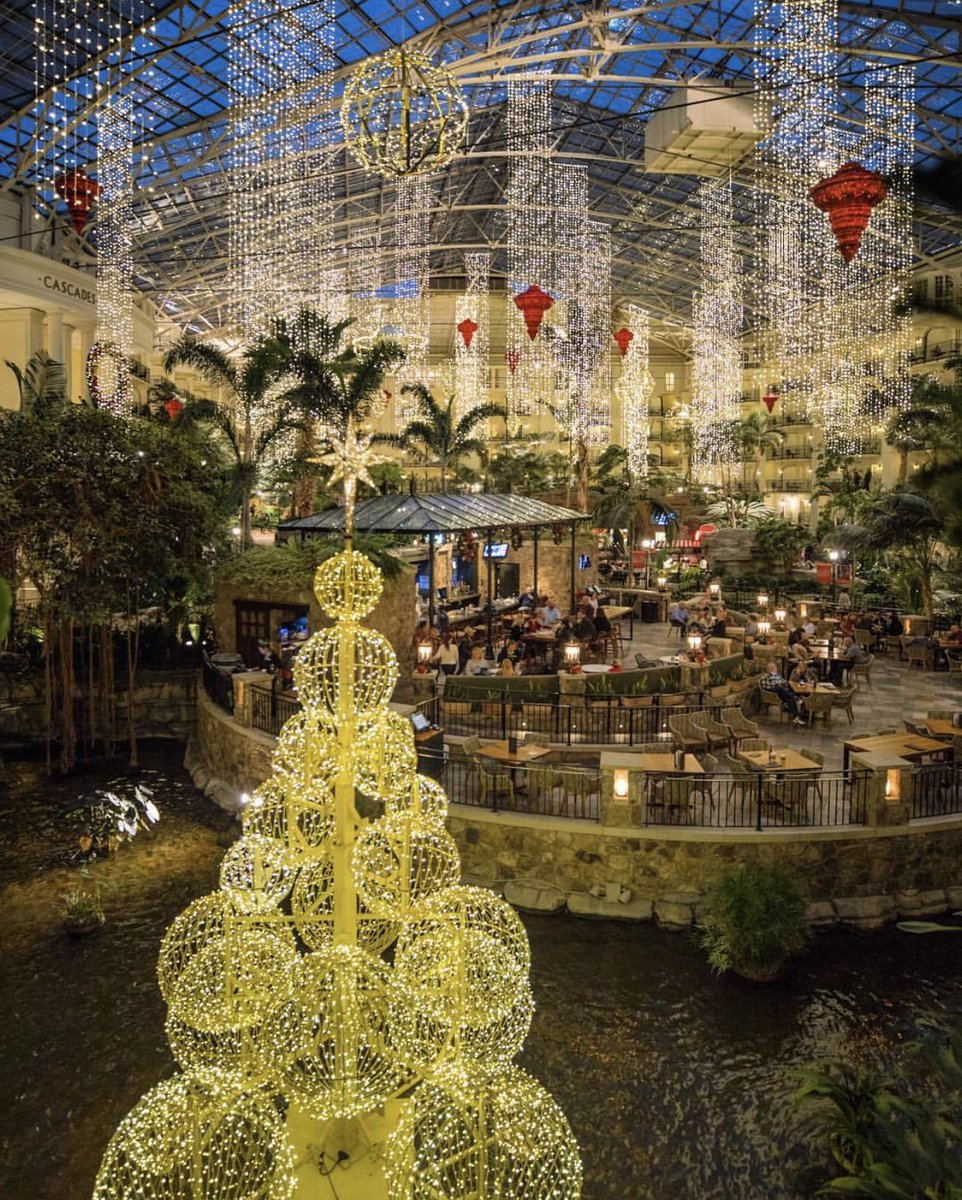 Tristar Adventures On Twitter Share Your Christmas Photos With Us By Using Our Hashtags Instagramtennessee And Tristaradventures Gaylord Opryland Hotel By Ryanjasonphotography Tennessee Nashville Opryland Gaylord Hotel Christmas