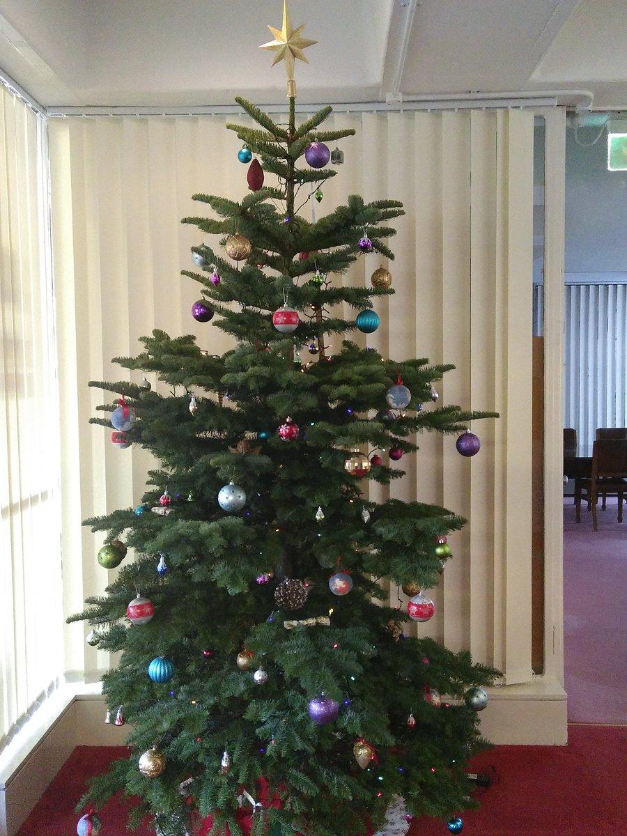 test Twitter Media - RT @Naoicea: 600 Christmas lights on the @DIAS_Dublin Christmas tree! Thanks Paul!  #DIASdiscovers https://t.co/IxbRMImAeM