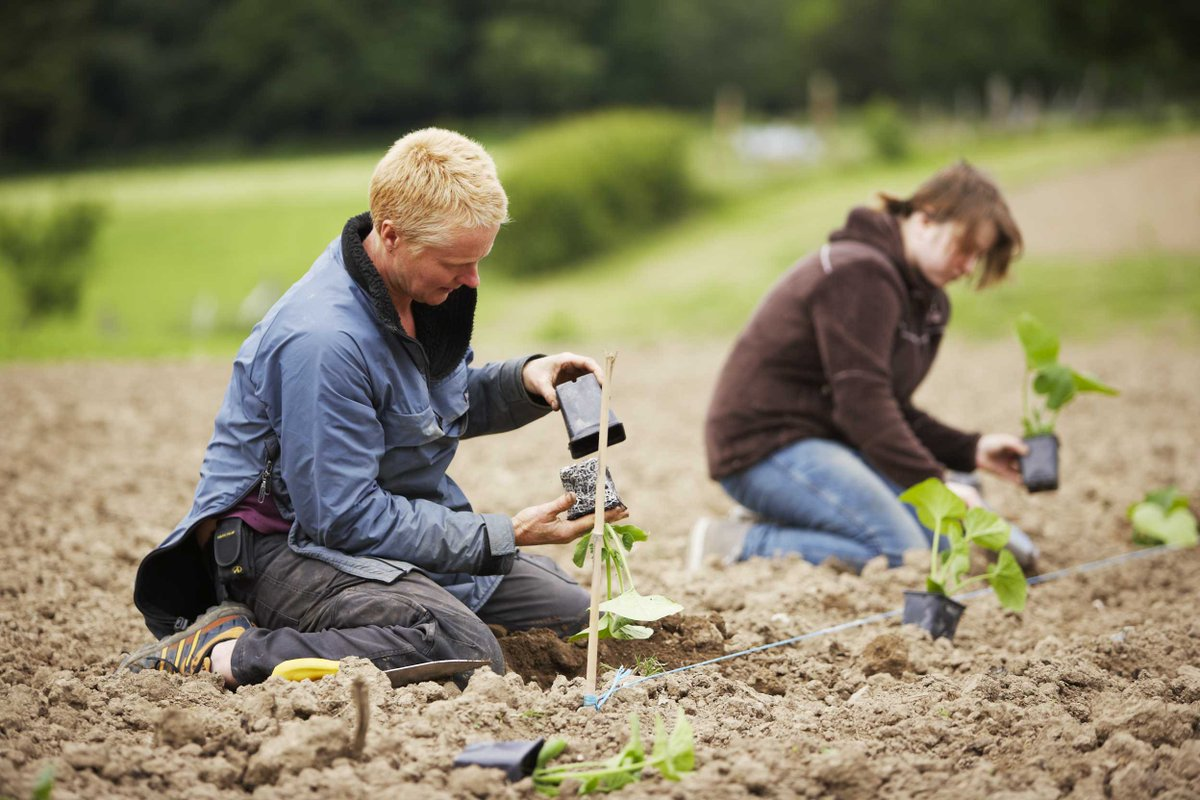 test Twitter Media - #Biodynamic farming is a #holistic approach to #agriculture. Farmers return more to the soil than they remove in the process of cultivating crops & animals. Find out more here: https://t.co/miJg0YTJ5S https://t.co/GLr7Noh0YS