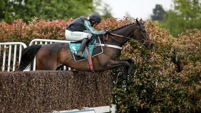 All you need to know as mighty Altior faces star trio in Tingle Creek > > Photo