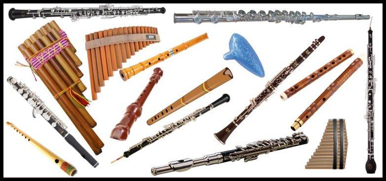 Virtual Flute