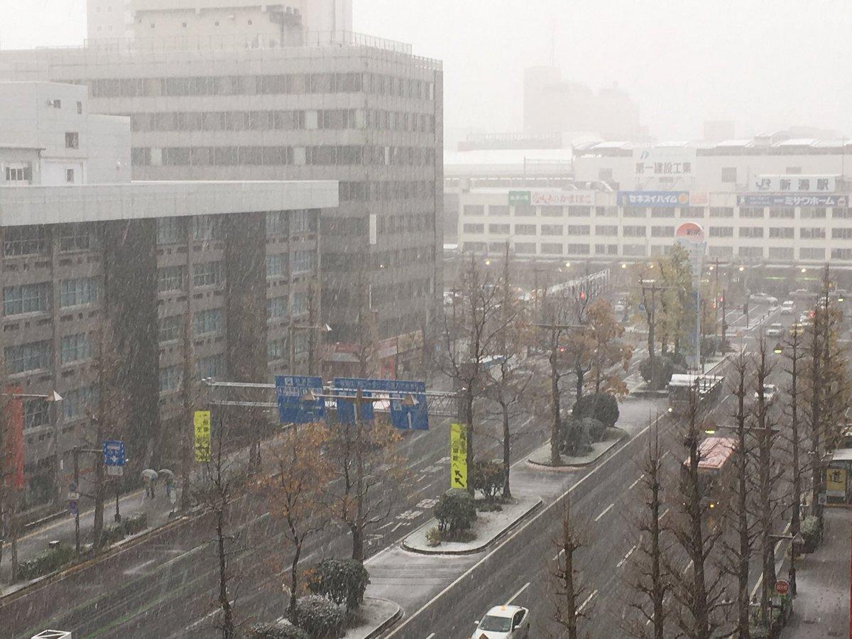 新潟、初雪キタ━━━━(゚∀゚)━━━━!!