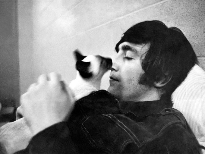 No dia 8 de Dezembro de 1980 a gente perdeu um anjinho (não tão anjo), falar sobre a falta que ele ainda faz é um pouco difícil, cada vocal da música só me deixa mais triste em pensar que você não está mais aqui. Eu te amo John Lennon Foto