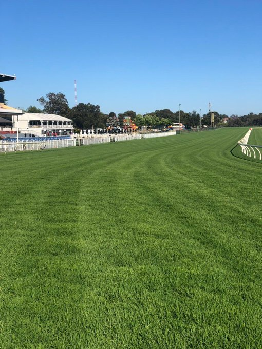 Racing HQ: Ascot @marcohlmus Best bets R2 - 9. Shackleton R4 - 7. Pearl Trade R8 - Kingston Town Classic- 15-12-2-4 Updated and correct. Photo